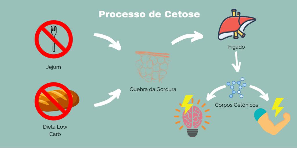 AKTA Liv - Processo de Cetose