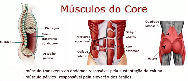 Fisioterapia - pilates - ft. guilherme abreu - fortalecimento do core - core - akta liv - grafico