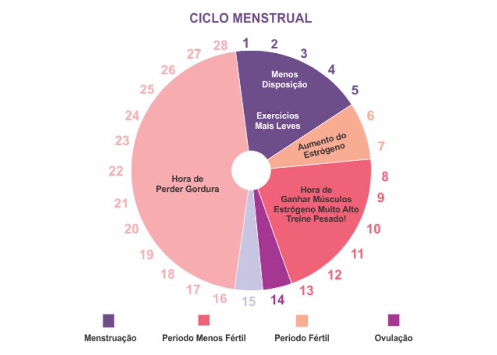 AKTA-Liv-Mastologista-Sao-Paulo-ciclo-menstrual-cartela