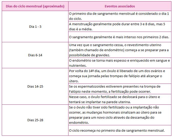 AKTA-Liv-Mastologista-Sao-Paulo-ciclo-menstrual-fases